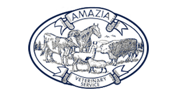 Logo for Veterinarians in Brush Prairie | Amazia Veterinary Service