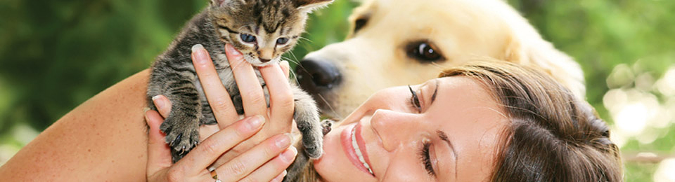 General Image - Dog with Woman and Kitten