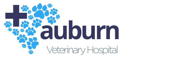 Logo for Veterinarians in Chagrin Falls  | Auburn Veterinary Hospital
