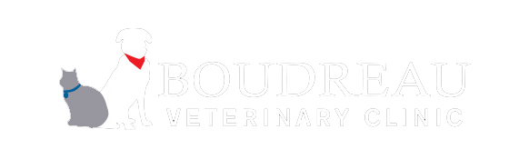 Logo for Boudreau Veterinary Clinic Mobile, Alabama