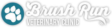 Logo for Veterinarians in Mcmurray |  Brush Run Vet Clinic