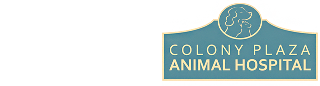 Logo for Veterinarians in The Villages | Colony Plaza Animal Hospital