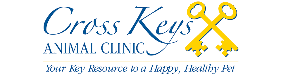 Logo for Veterinarians in Florissant, MO | Cross Keys Animal Clinic