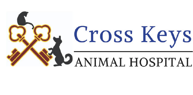 Logo for Veterinarians in Williamstown | Cross Keys Animal Hospital