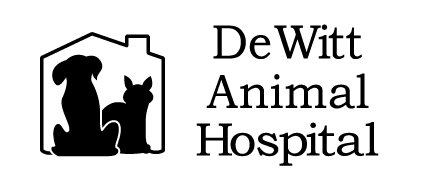 Logo for Veterinarians in Plainville | Dewitt Animal Hospital