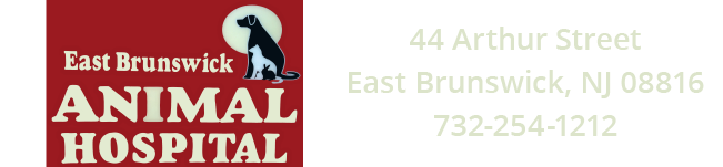 Logo for Veterinarians in East Brunswick | East Brunswick Animal Hospital