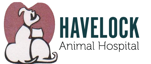 Havelock Animal Hospital