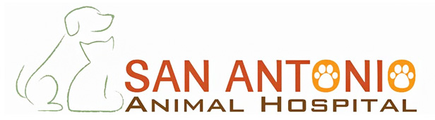 Logo for Veterinarians San Antonio, FL | San Antonio Animal Hospital