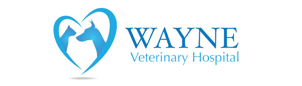 Logo for Veterinarians in Wayne County | Wayne Veterinary Hospital