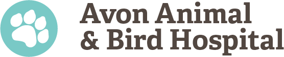 Avon Animal & Bird Hospital