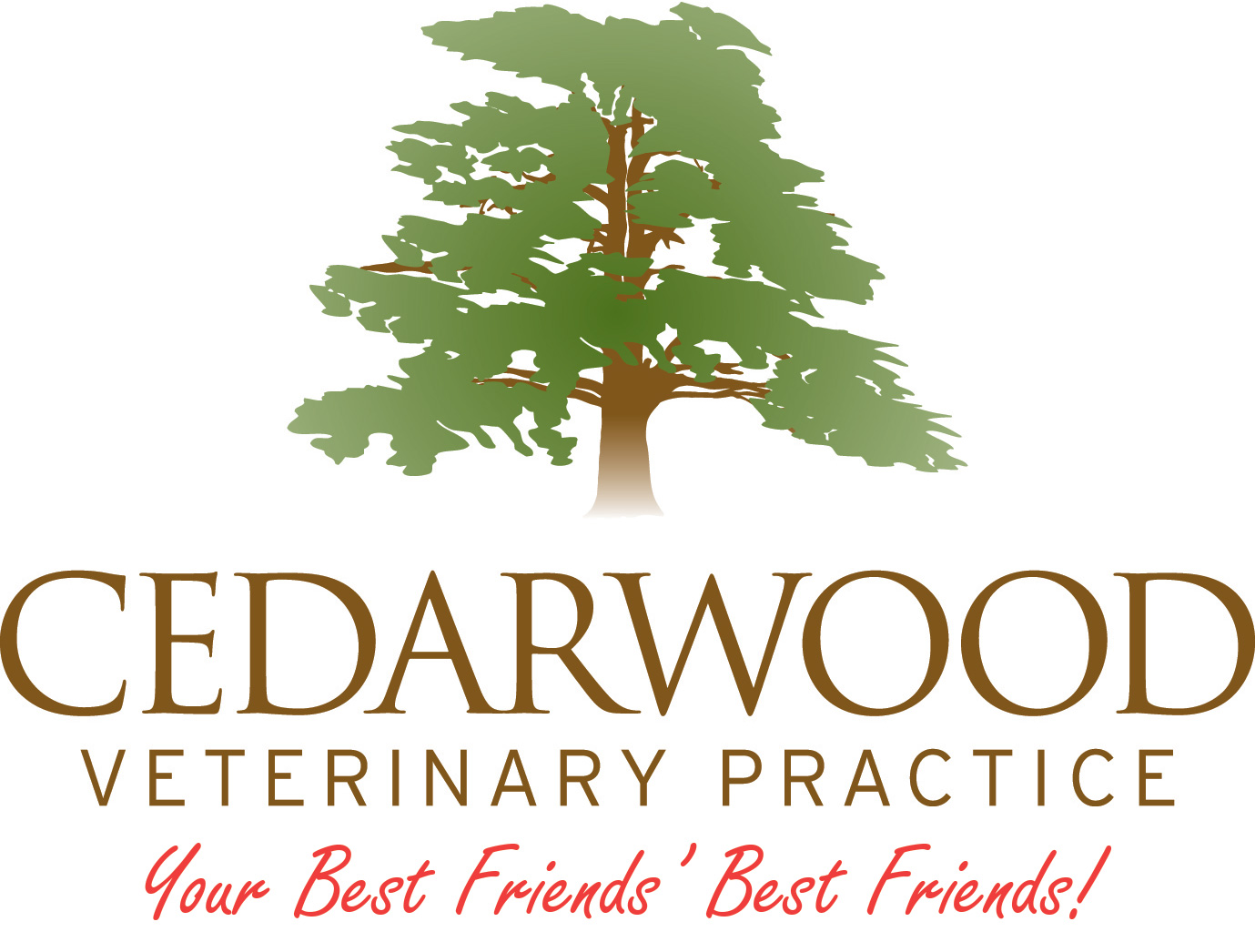 Cedarwood Veterinary Practice