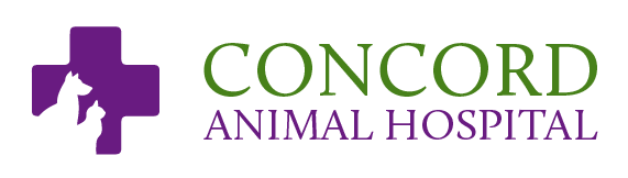 Logo for Concord Animal Hospital