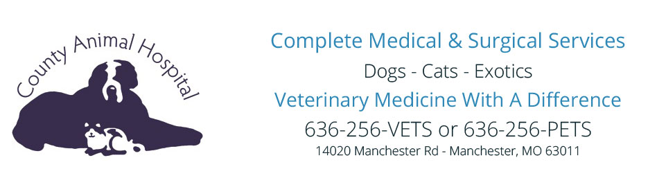 Logo for Veterinarians Manchester | County Animal Hospital