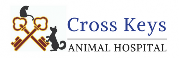 Logo for Cross Keys Animal Hospital | Veterinarians in Williamstown