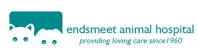 Logo for Veterinarians in Devonshire | Endsmeet Animal Hospital