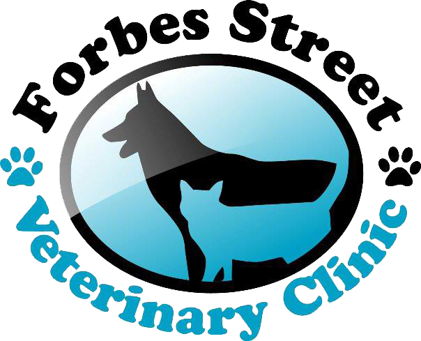 Forbes Street Veterinary Clinic
