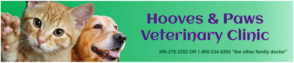 Logo for Veterinarians Elrose, SK  | Hooves and Paws Veterinary Clinic