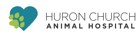 Logo for Veterinarians in Windsor | Huron Church Animal Hospital