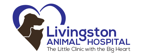 Logo for Veterinarians in Grimsby, ON | Livingston Animal Hospital
