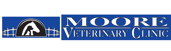 Logo for Veterinarians in Huntsville, TX | Moore Veterinary Clinic