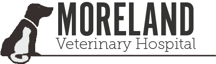 Moreland Veterinary Hospital