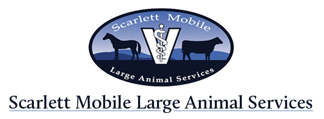 Logo for Scarlett Mobile Large Animal Services Asheboro, North Carolina
