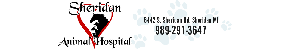 Logo for Veterinarians in Sheridan | Sheridan Animal Hospital