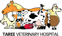 Taree Veterinary Hospital