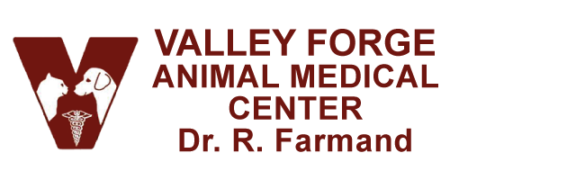 Logo for Veterinarians in Phoenixville, PA | Valley Forge Animal Medical Center