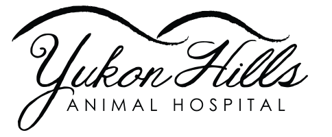Logo for Veterinarians in Yukon | Yukon Hills Animal Hospital